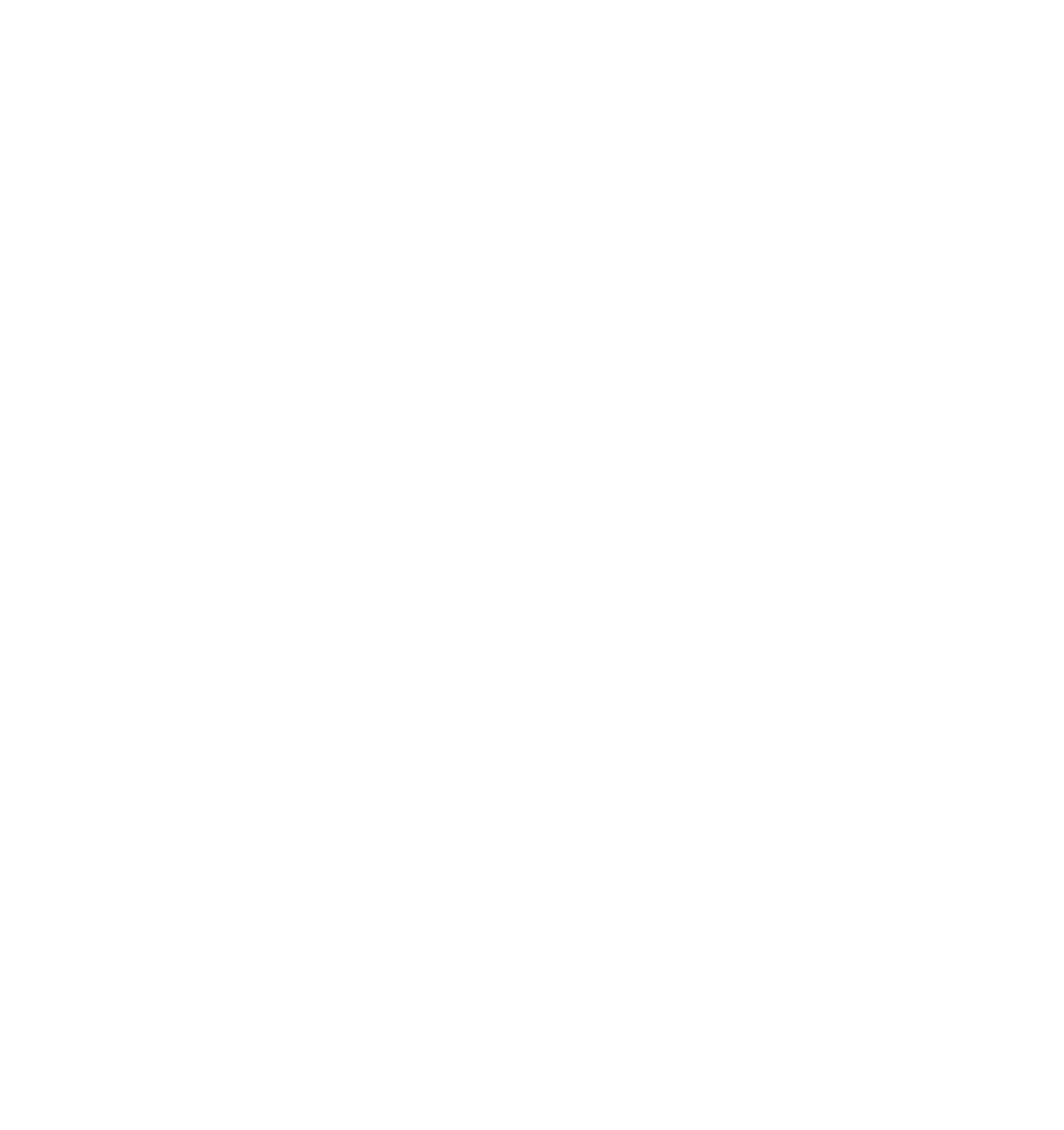 PreprostoMontessori logo